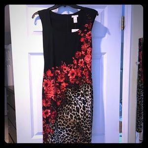 Cache Dress NWT